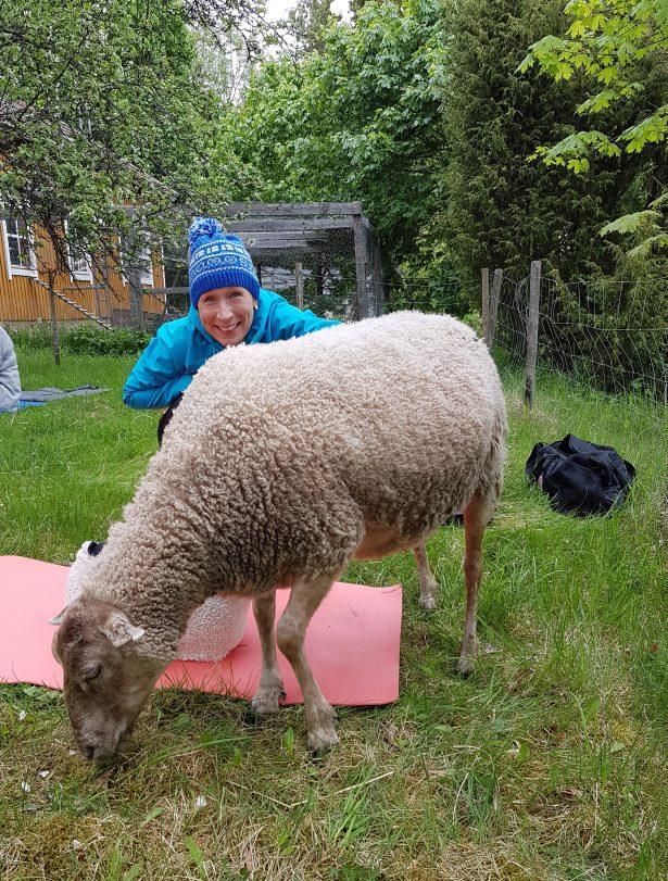 Eija lammasjoogassa